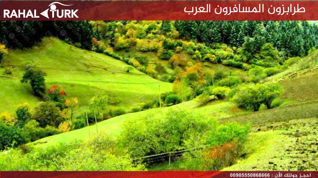 طرابزون المسافرون العرب